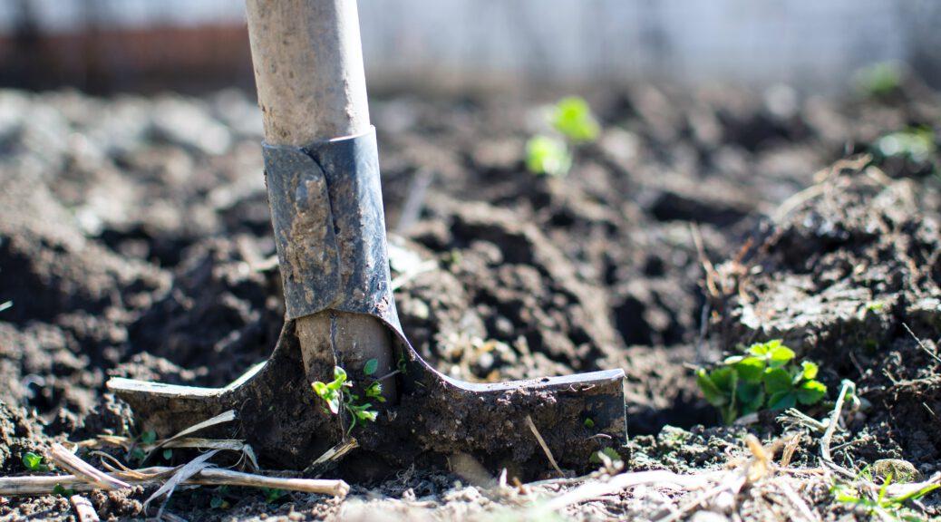 jardinage de la terre